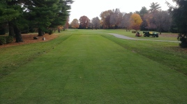 17 tee after